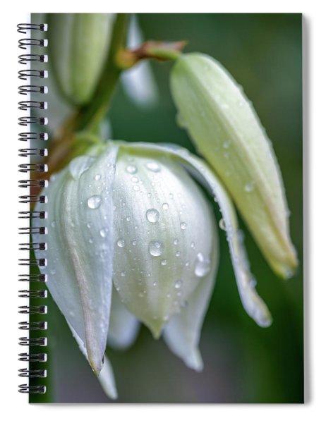 Yucca Bloom Spiral Notebook