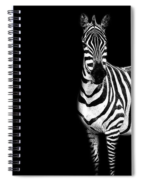 Zebra Drama Spiral Notebook