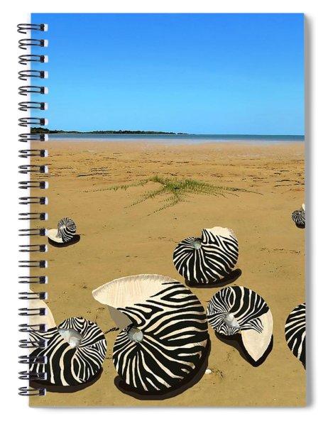 Zebra Nautilus Shells On The Beach  Spiral Notebook