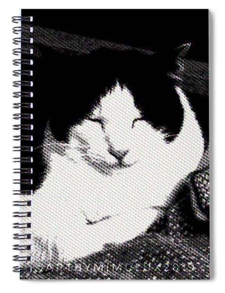 Zen Cat Spiral Notebook
