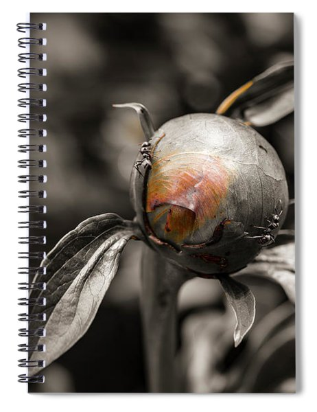 Zombie Flower Attacked By Ants Spiral Notebook