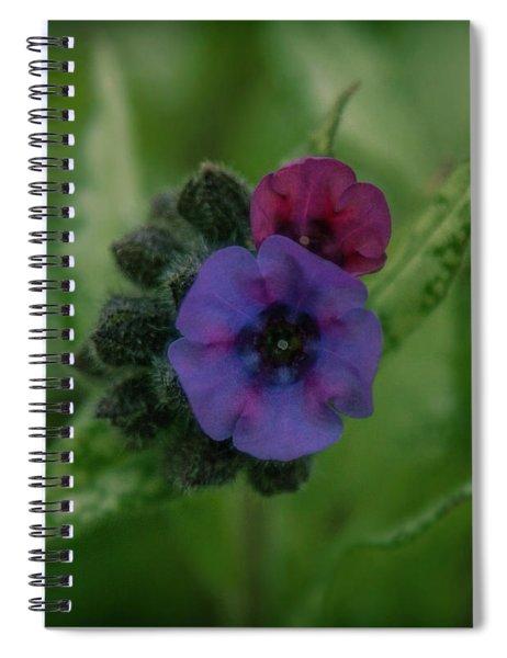 Zooooom Spiral Notebook