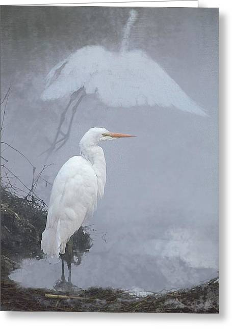 .  .  .  Into The Mist  .  .  . Greeting Card