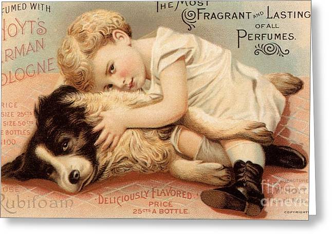 1890s Usa Babies Hoytes Cologne Dogs Greeting Card by The Advertising Archives