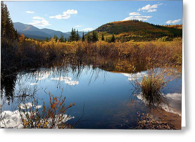 A Reflection Of Fall Greeting Card by Jim Garrison