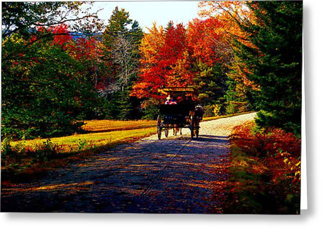 Acadia National Park Carriage Trail Fall  Greeting Card