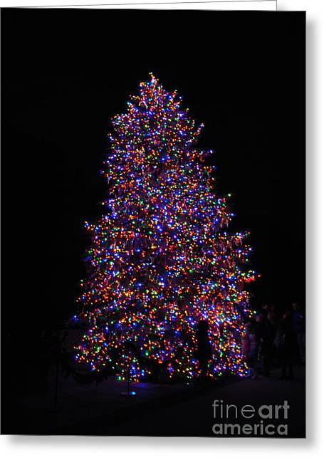 All Lit Up Greeting Card by Jacqueline M Lewis