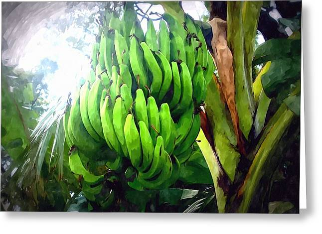 Banana Plants Greeting Card by Lanjee Chee