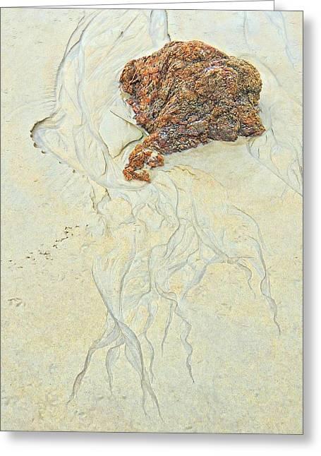 Beach Sand  2 Greeting Card by Marcia Lee Jones