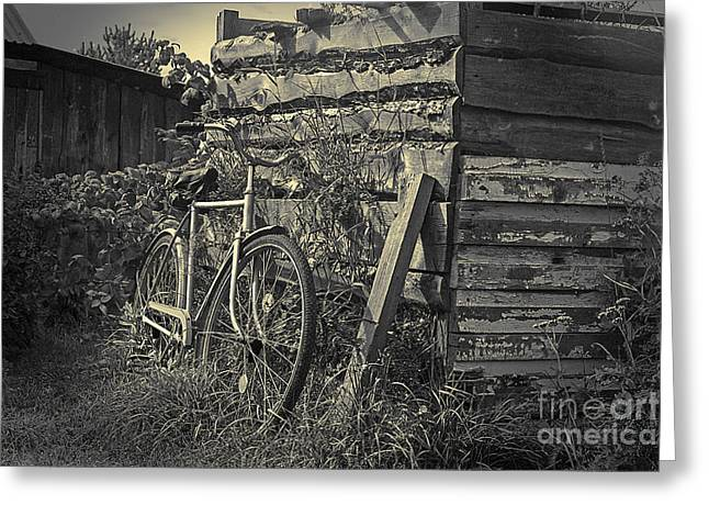 Greeting Card featuring the pyrography  Bicycle by Evgeniy Lankin
