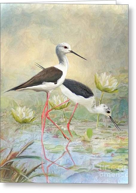 Greeting Card featuring the digital art  Black Winged Stilt by Trudi Simmonds
