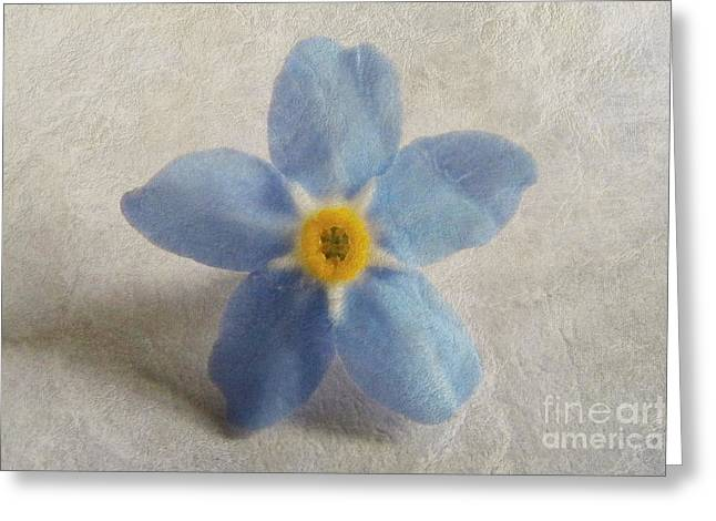 Myosotis 'forget-me-not'- Single Flower Greeting Card