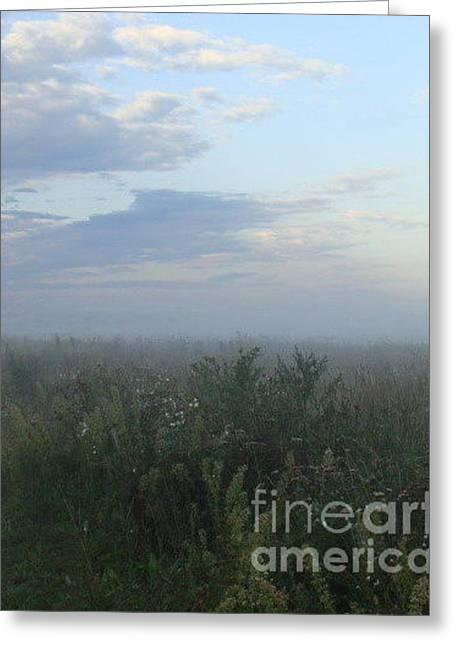 Endless Wild Field Greeting Card by Mikhail Savchenko