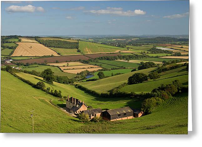 Exe Valley In Devon Greeting Card