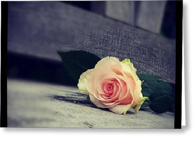 Gray In Romantik Greeting Card