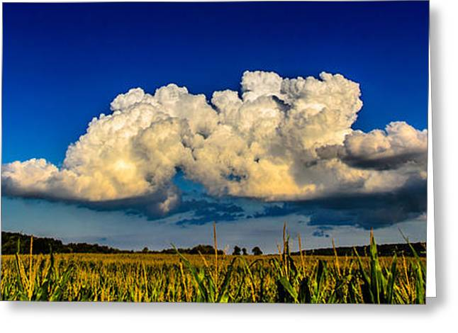 I Really Don't Know Clouds At All Greeting Card by Randy Scherkenbach