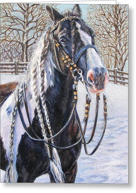 I'm Ready For The Ribbons Gypsy Vanner Horse Greeting Card