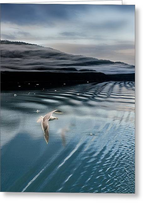 Journey With A Sea Gull Greeting Card