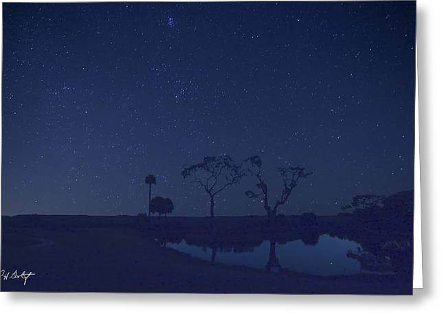 Meteor Shower In The Lowcountry Greeting Card
