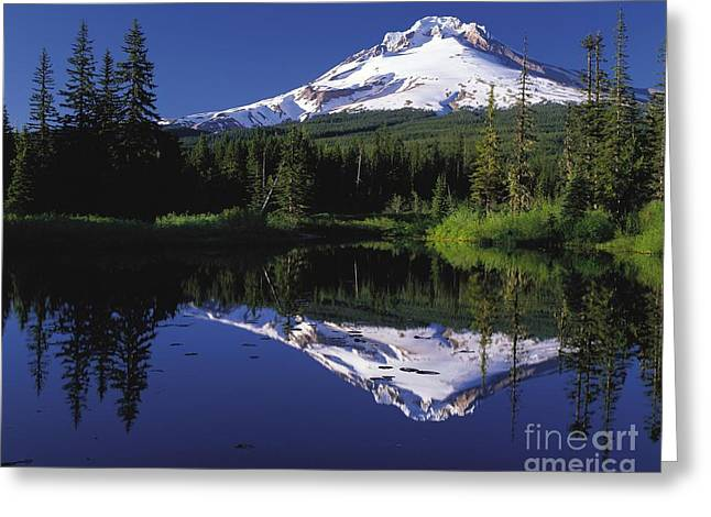 Greeting Card featuring the photograph  Mount Hood Oregon  by Paul Fearn
