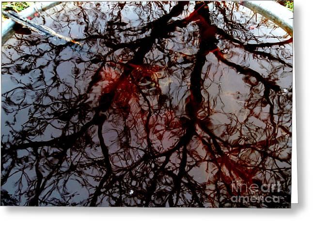 My Reflection Bucket Greeting Card by Steven Valkenberg