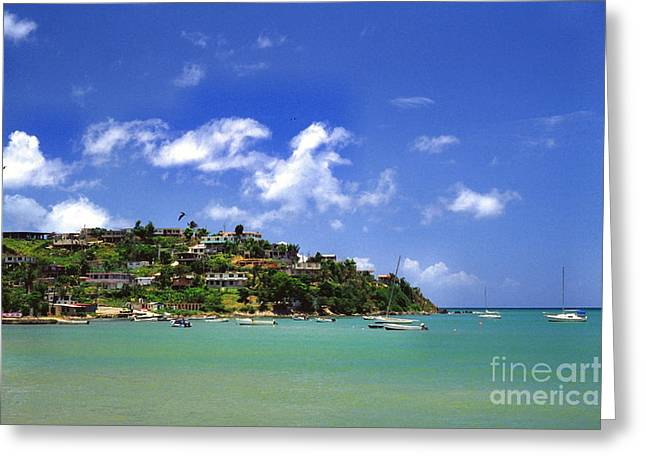 Naguabo Shoreline Greeting Card by Thomas R Fletcher