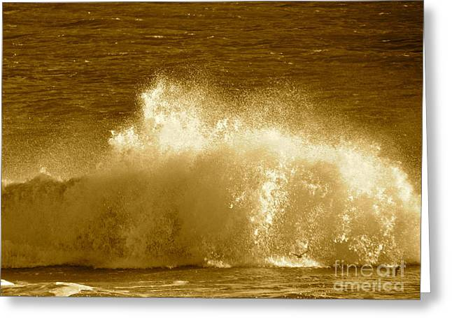 Ocean Life Remembers  Greeting Card by Q's House of Art ArtandFinePhotography