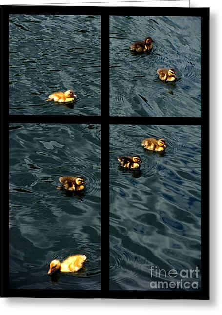 On Golden Duck Pond Greeting Card by Peter Piatt