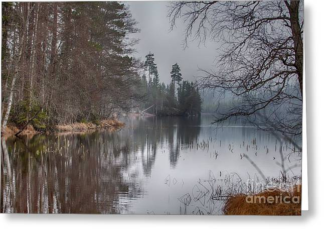 Greeting Card featuring the photograph  One Solemn Spring In May by Rose-Maries Pictures