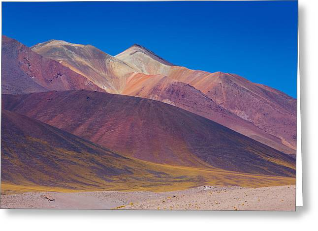 Painted Atacama Greeting Card
