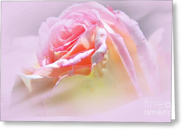 Peaceful Pink Rose Haze Greeting Card