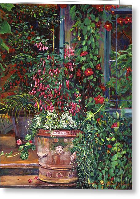 Pot Of Fuschia Flowers Greeting Card by David Lloyd Glover