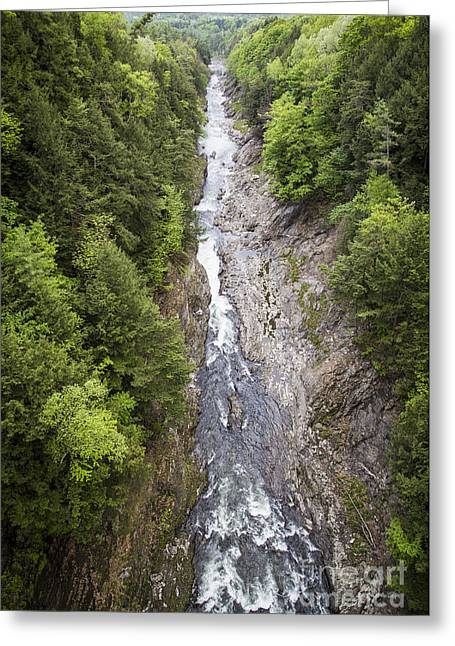 Quechee Gorge Quechee Vermont Greeting Card by Edward Fielding
