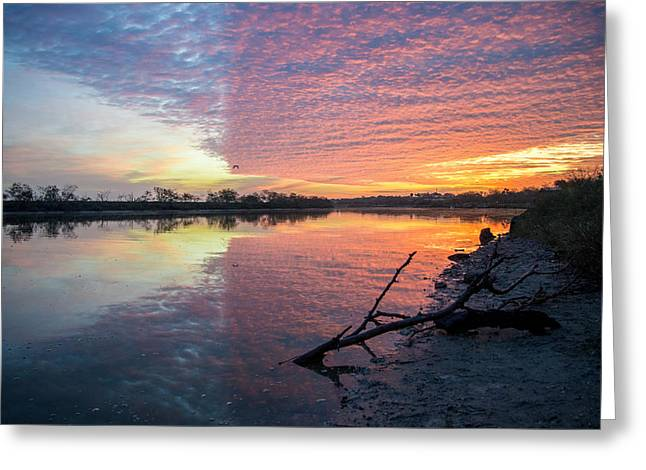 River Glows At Sunrise Greeting Card by Leticia Latocki
