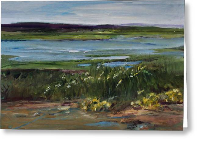 Salt Marsh Greeting Card by Diane Ursin