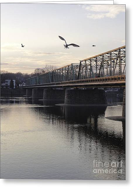 Gulls At The Bridge In January Greeting Card