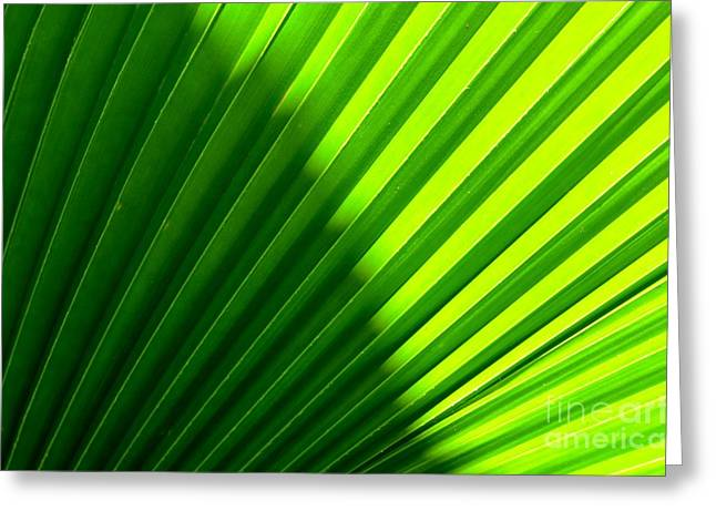 Simply Green Greeting Card by Michelle Meenawong