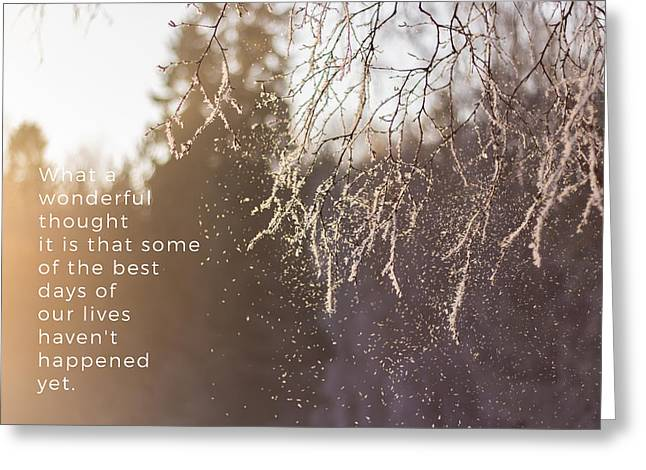 Snow Falling From A Tree Branch Greeting Card by Aldona Pivoriene