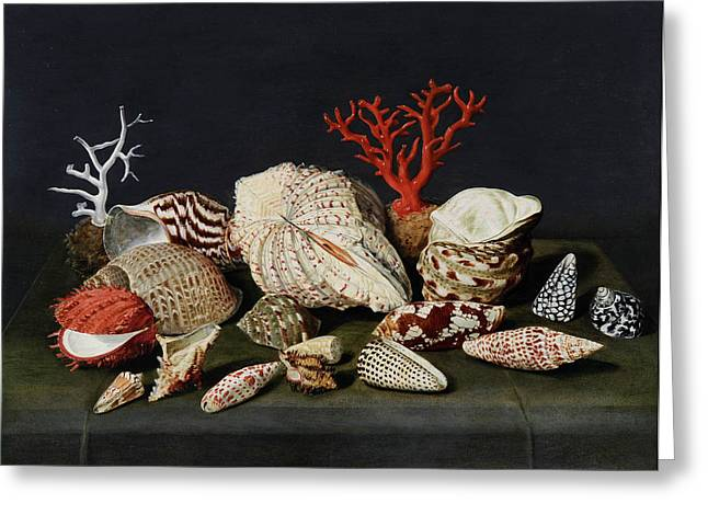 Still Life With Shells And Coral Greeting Card