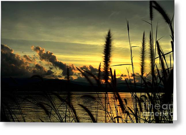 Sunset Greeting Card by Michelle Meenawong