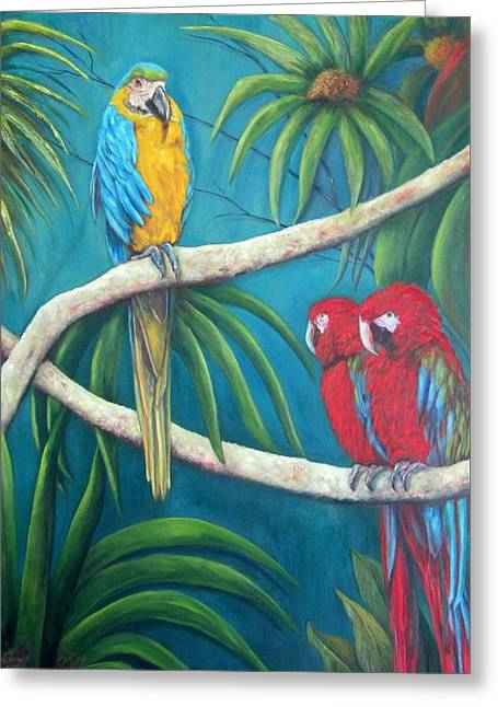 Three Is A Crowd,macaws Greeting Card