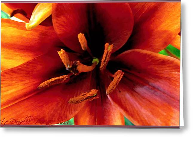 Vertical Orange Lily Macro  Greeting Card by Danielle  Parent
