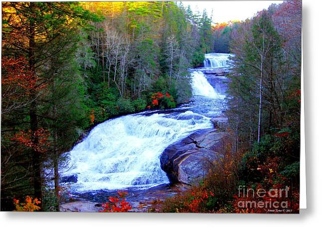 Waterfall At Dupont Forest Nc 2 Greeting Card by Annie Zeno