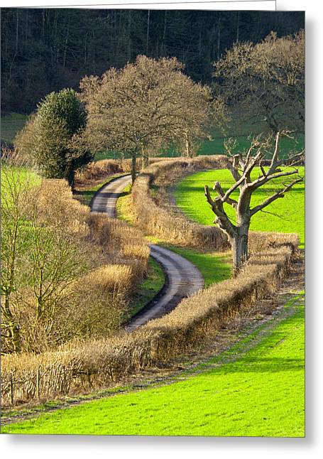 Winding Country Lane Greeting Card