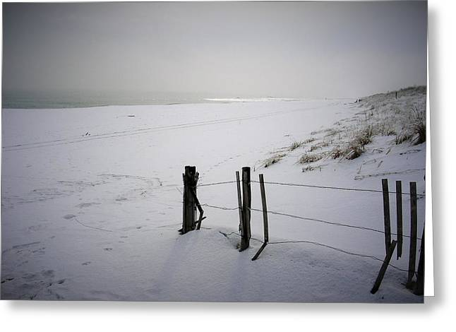 Winters Snow At Island Beach State Park Greeting Card by Vincent DeLucia