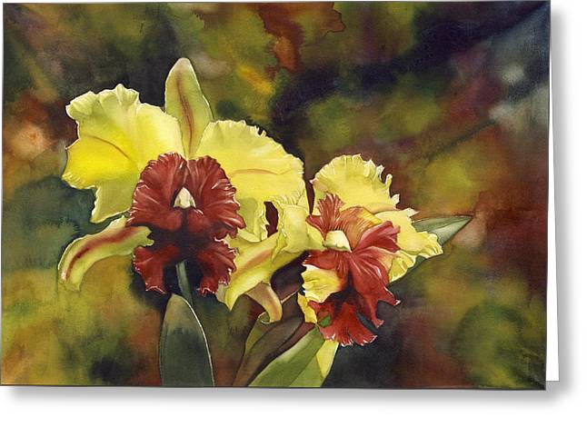 Yellow And Red Cattleya Orchids Greeting Card by Alfred Ng