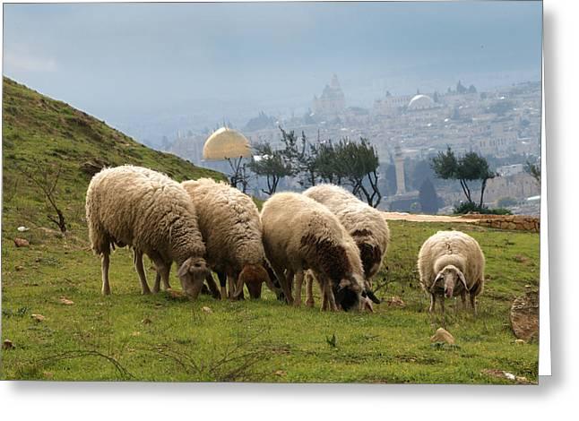 003 Jerusalem Greeting Card by Alex Kolomoisky