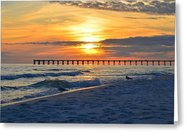0108 Sunset Colors Over Navarre Pier On Navarre Beach With Gulls Greeting Card by Jeff at JSJ Photography