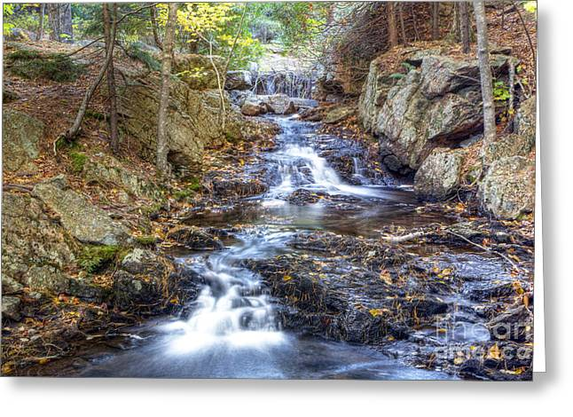Baxter Park Greeting Cards - 0408 Baxter State Park Maine Greeting Card by Steve Sturgill