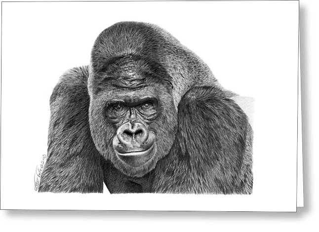 Greeting Card featuring the drawing 042 - Gomer The Silverback Gorilla by Abbey Noelle